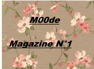 Petite Présentation De MOODE ! gvcuycdy-300x222